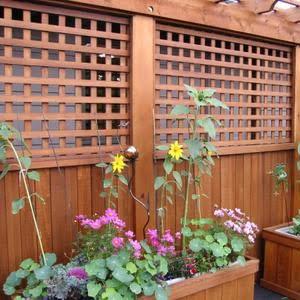 Cedar Lattice Panels